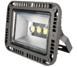 China Luxury style CE ROHS IP67  outdoor led flood light supplier