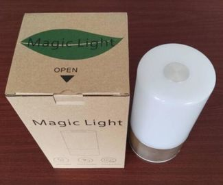 China Touch sensor bluetooth control portable smart LED Light intelligent light supplier